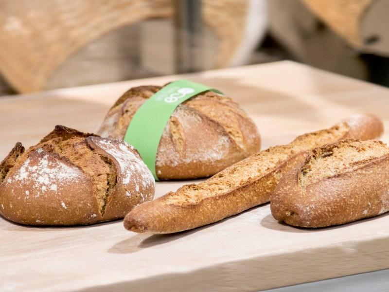 Nuevo decreto ley del pan: ¡te lo explicamos!